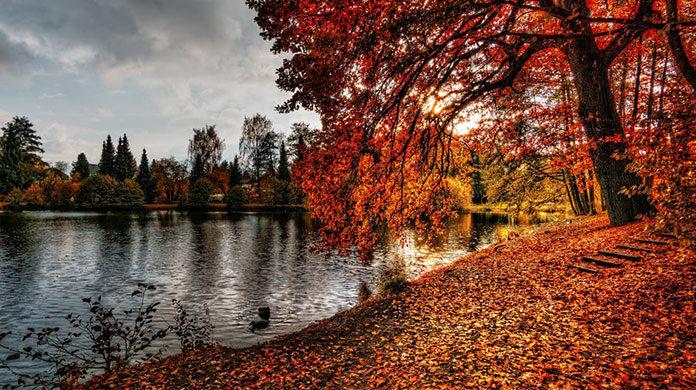 Jesienią jedziemy nad wodę. Sprawdź dlaczego zarezerwować pokój nad jeziorem!